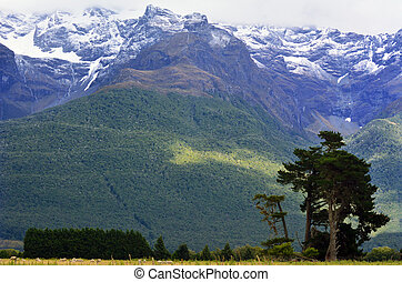 Landscape of Glenorchy New Zealand NZ NZL - Landscape of...