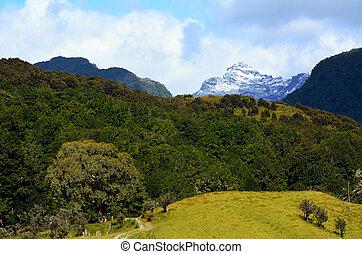 Landscape of Glenorchy New Zealand NZ NZL - Landscape of...