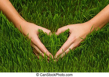 Human's hands making heart symbol in grass