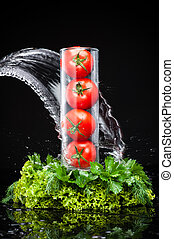 tomatos and greenery in water - four tomatoes in a glass...