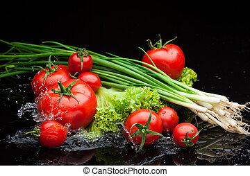 tomatos and greenery in water - small group of fresh...