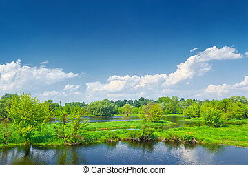 Spring landscape by The Narew braided river. Masovia,...