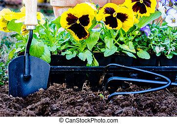 Planting Flowers Closeup - Planting flowers closeup. Closeup...