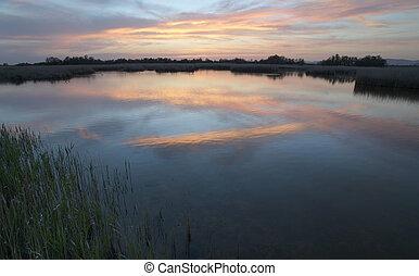 Wetland landscape Sunset. - Sunset on wetland landscape...