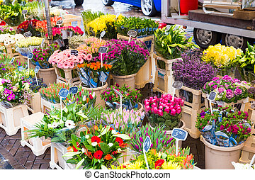 Flowers on display at a street market in Zwolle the...