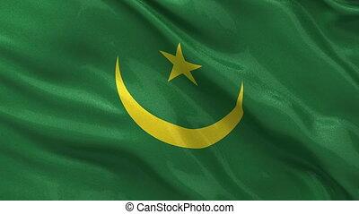 Flag of Mauritania seamless loop