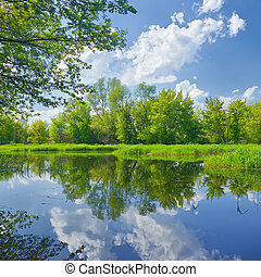 Sunny spring landscape by The Narew River Mazovia, Poland