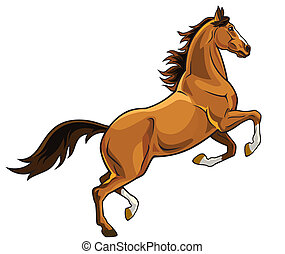 rearing brown horse - rearing brown horse, side view image...