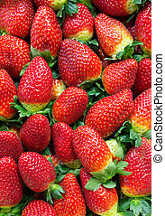 Background of ripe strawberries - Fresh Ripe Strawberries...