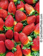 Plano de fondo, maduro, fresas