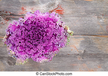 Purple kale on rustic wooden table - Overhead view of a...