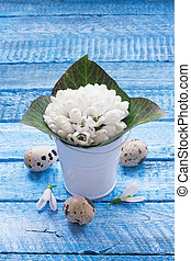 Bucket with snowdrops over blue wood background