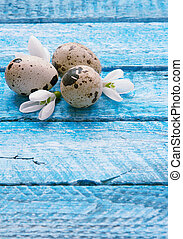 Easter wood background with eggs and snowdrops