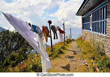 fresh laundry hanging on a clothesline, blue sky