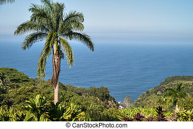 Kaumahina State Wayside overlooking the Pacific Ocean on The...