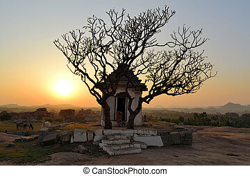 Ancient ruins with tree silhouette at sunset - Ancient ruins...