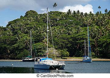 porto,  vanua, Insel,  savusavu,  Levu, Segelboote, Fidschi