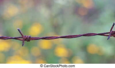 Old Barbed Wire Knot Macro Dolly - Dolly, macro shot of a...
