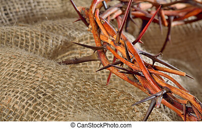 crown of thorns on sack background