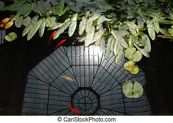 The Orangery - An indoor fish pond with the glass ceiling of...