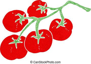 tomatoes on vine illustration