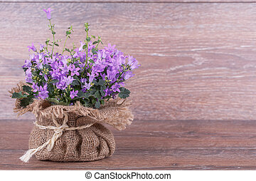 Campanula purple flowers in bag on  wooden background