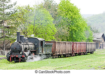 steam freight train 126014, Resavica, Serbia