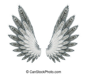 wings - An image of some beautiful feather wings