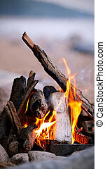 Campfire - Bright campfire. Fire in marching conditions.