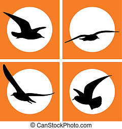 Set of Gull Silhouette icon, vector