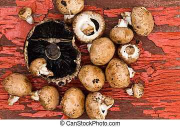 Fresh portobello and brown agaricus mushrooms - Fresh...