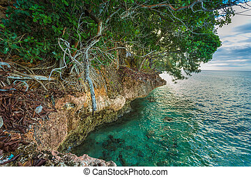 Rocky coast of Prison Island - Dense vegetation on the side...