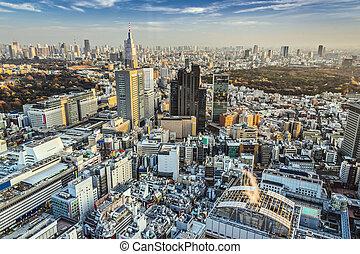 Tokyo Cityscape - Tokyo, Japan cityscape aerial cityscape...