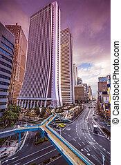 Tokyo Cityscape - Tokyo, Japan cityscape at Shinjuku...