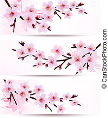 Three spring banners with blossoming sakura branches. Vector...