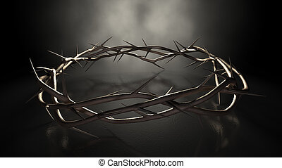 Crown Of Thorns On Dark - A eye level view of branches of...