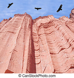 Condors. - Condors above red rock canyon. Talampaya National...