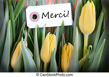 Tulip Background with Merci - Tulip Background with the...