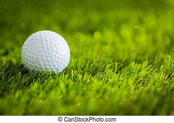 vert, balle,  golf, herbe