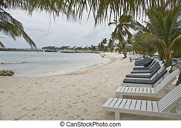 Empty beach chairs lined up along the Caribbean beach at a...