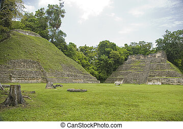 Mayan structures at Caracol - Mayan sturctures at the...