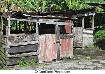 Caribbean Shack - Caribbean shack in the islands.