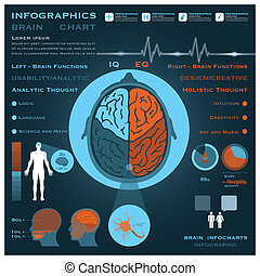 Brain Infographic Infocharts Health And Medical Science...