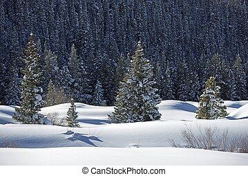 風景, 荒野, 雪が多い