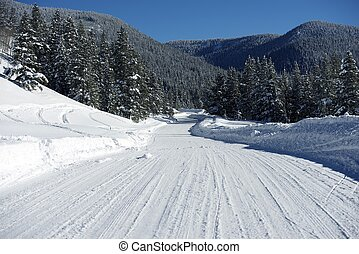 Backcountry Colorado Road in Winter Scenic Winter Road...