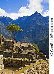 Houses of Machu Picchu