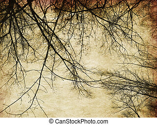 Grunge bare trees silhouettes - Background with grunge bare...