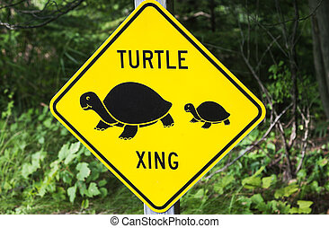 Turtle xing - sign seen by the road