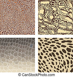 Animal color vector background