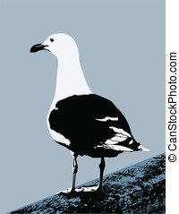 Seagull - This is a vector graphic of a seagull standing on...